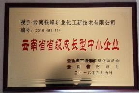 云南省省级成长型中小企业